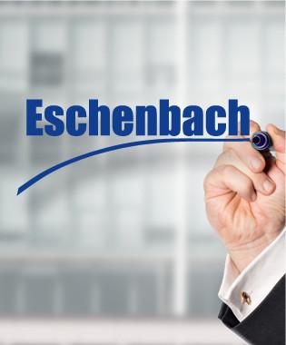 Wirtschaftsprüfer Eschenbach